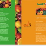 Brochure-L and M