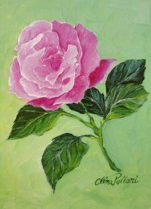 Floral-Pink Rose