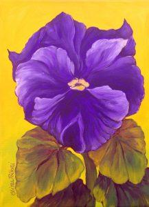 Flower-Purple Pansy