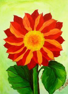 Flower-Red Daisy