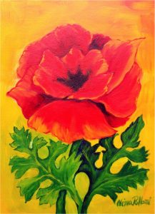 Flower-Red Poppy