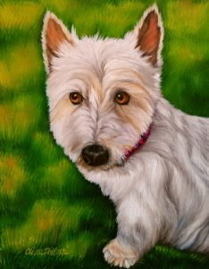 Pet Portrait of Andi