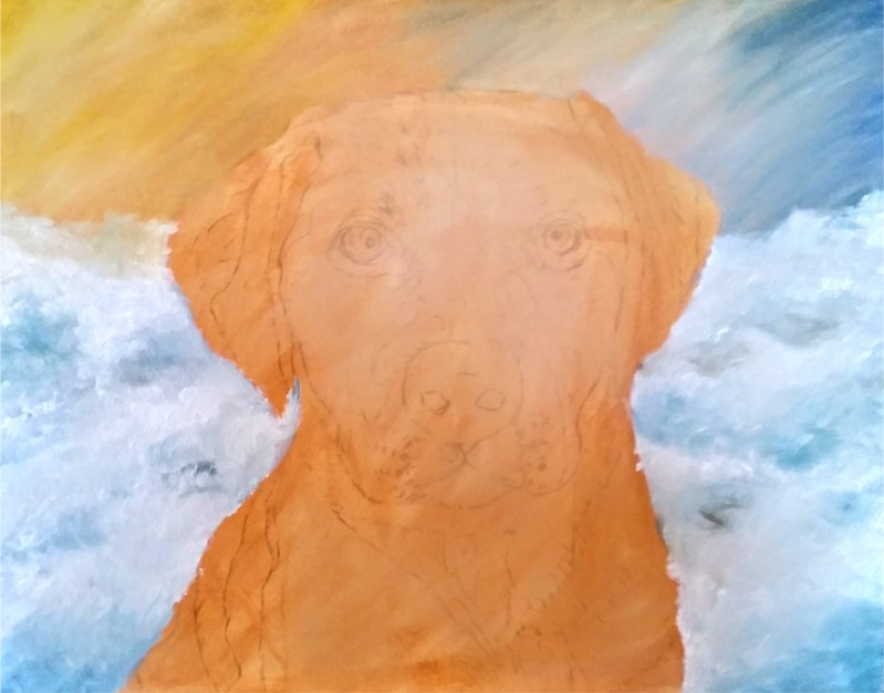 Gold Labrador Retriever Portrait Under-Paint