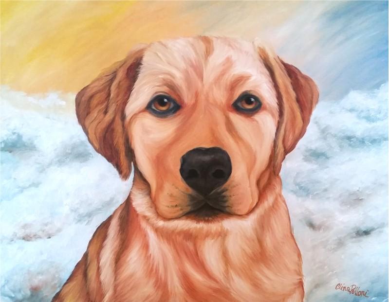 Gold Labrador Retriever Portrait